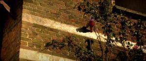Plop en het vioolavontuur (2005)