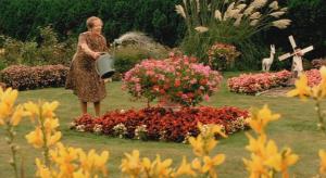Dora van der Groen in Pauline & Paulette (2001)