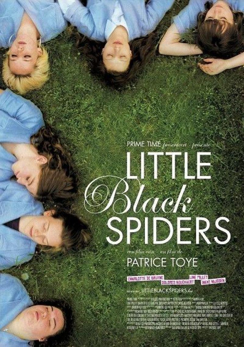 Poster Little Black Spiders