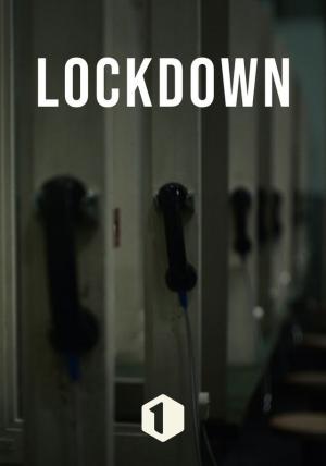 Trailer Lockdown